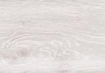 PB-FL 49 001 09  Oak Artic