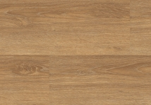 1124-2 Bush Oak