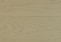 Клен песочный