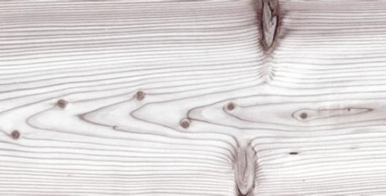 Пробковый пол – PrintCork Larch Frost