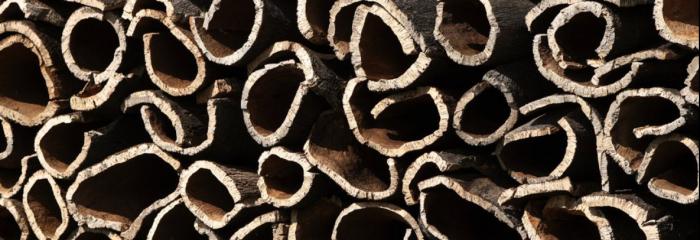 пробковая кора - это сырье для пробковых покрытий